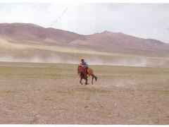 """Аймгийн Алдарт уяач Т.Даваасүрэн:""""Аавын чинь морь л ингэж хол тасархай түрүүлдэг байсан даа"""" гэсэн үг их урам хайрласан"""