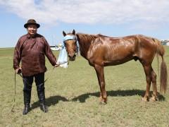 Монгол Улсын Манлай уяач Б.Энхболд: УЯАЧИД ӨӨРСДӨӨ ЖУДАГТАЙ БАЙЖ ЭРЛИЙЗЭЭ ЭРЛИЙЗЭД НЬ Л УРАЛДУУЛАХ ЁСТОЙ