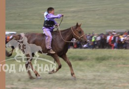 Тод манлай уяач Х.Бат-Эрдэнийн Даян түмний эх хүрэн морь түрүүлж буй нь
