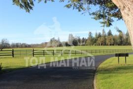 Gilltown үржлийн ферм