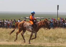 Долоо-Н.Даш-Өлзийн хонгор