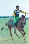 Сүхбаатар аймгийн Онгон сумын 90 жилийн ойн баяр наадамд түрүүлж, айрагдсан хурдан хүлгүүд