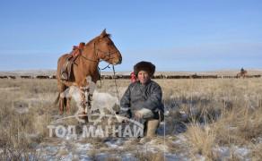 Л.Лхагва: Монголын энэ сайхан хээр талаар, морин дэл дээр салхи татуулан давхиж, морь уяж наадахгүйгээр залуу насыг өнгөрөөнө гэдэг дэндүү уйтгартай