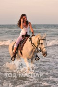 Өрнөдөд морь унаж турах фитнес моодонд орж байна