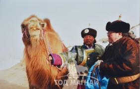 МУ-ын Гавъяат малчин, МУ-ын Алдарт уяач Ц.Шинэн: Дөмөг учраатай таарсан бөх улам сайжирдагтай адил бэсрэгтэй хамт уягдсан монгол тэмээ хурдаараа дутна гэж байхгүй