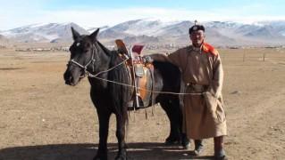 МУ-ын Алдарт уяач Ж.Баянжаргал: Баруун аймгуудад гуравхан байдаг