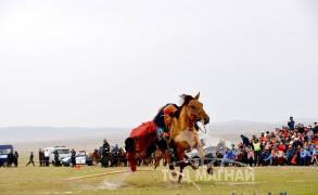Морьтон монголчууд