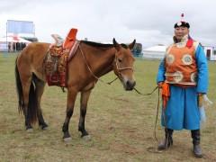 Морь бариач Ч.Чулуунбат: АМАН ХҮЗҮҮ, АЙРГИЙН ТАВЫН МОРЬДЫГ БАРИХ АМАРГҮЙ