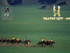 Монгол адууны чансааг тогтооно