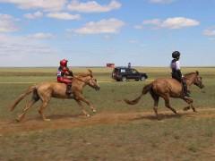 Дорнод аймгийн баяр наадамд 400 гаруй хурдан хүлгүүд тоосоо өргөлөө