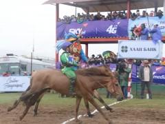 Д.Баянбатын Наран хонгор