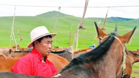 Сумын Алдарт уяач Л.Цэдэнсодном: Ноднин аймгийн наадамд хээр үрээ зургаалахад айргийн тавд нэг л монгол адуу байсан